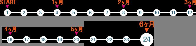図:6ヶ月の学習計画